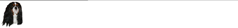Santana Gwellian logo